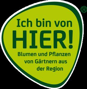 IBVH_Logo