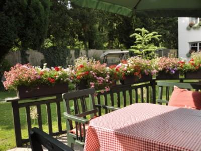 Balkonkastenbepflanzung mit Wasserspeicher