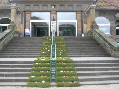 Eingang Stadtwaldhaus mit Rollrasen und Blüten