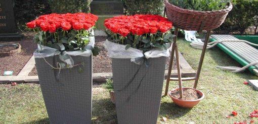 Rosen am Grab aufgesteckt als Wurfstrauß