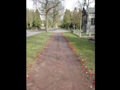 Blütenblätter auf dem Weg zum Grab