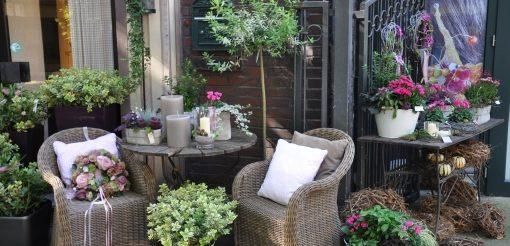 Ideen zur Gestaltung mit Pflanzen